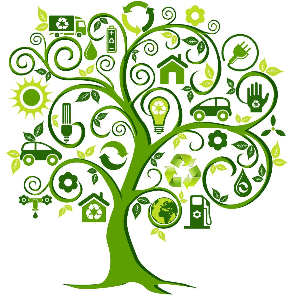 l'arbre, symbole de l'équilibre